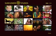 Click for the portfolio on Sunflowers Studios
